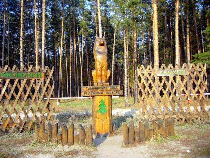 Товарный знак Тамбовский волк